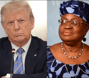 Why US opposed Okonjo-Iweala as consensus candidate for WTO Director-General